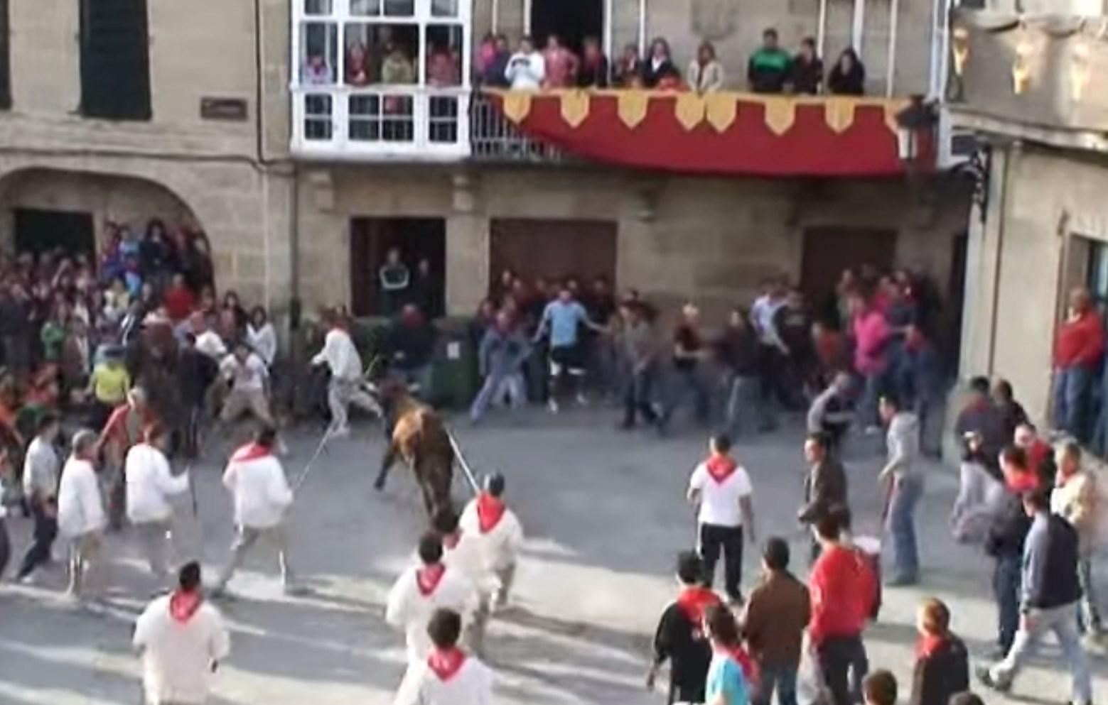 Videos da Festa do Boi 2008