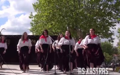 Videos da Festa do Boi 2013